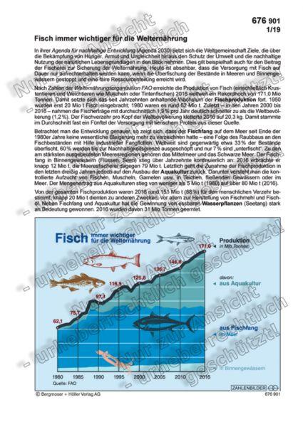 Fisch immer wichtiger für die Welternährung