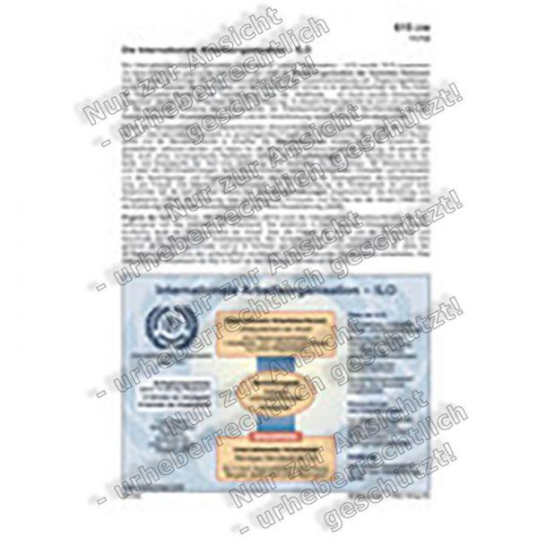 Internationale Arbeitsorganisation - ILO