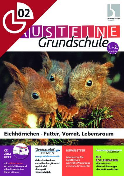Eichhörnchen - Futter, Vorrat Lebensraum
