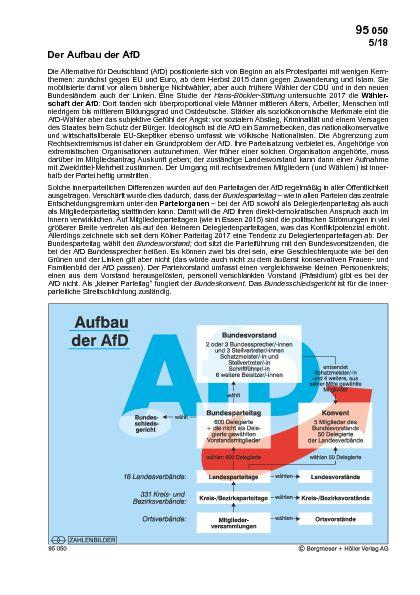 Der Aufbau der AFD
