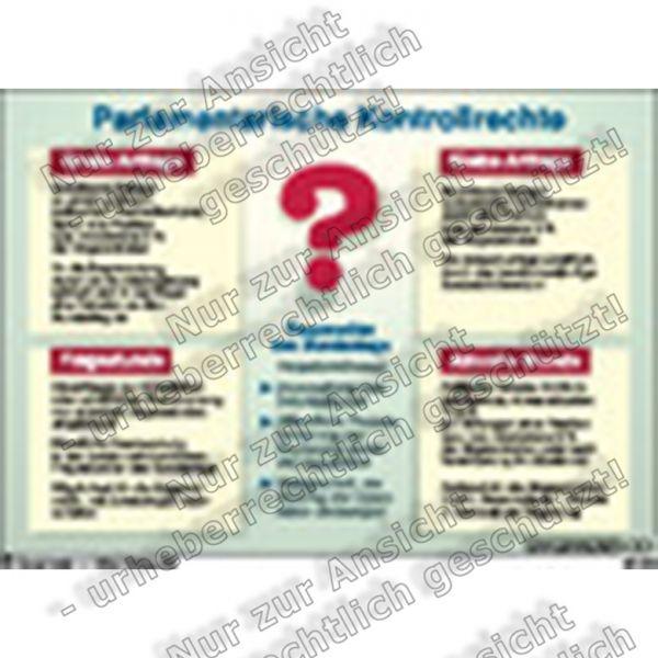 Parlamentarische Kontrollrechte