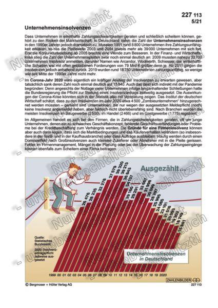 Unternehmensinsolvenzen