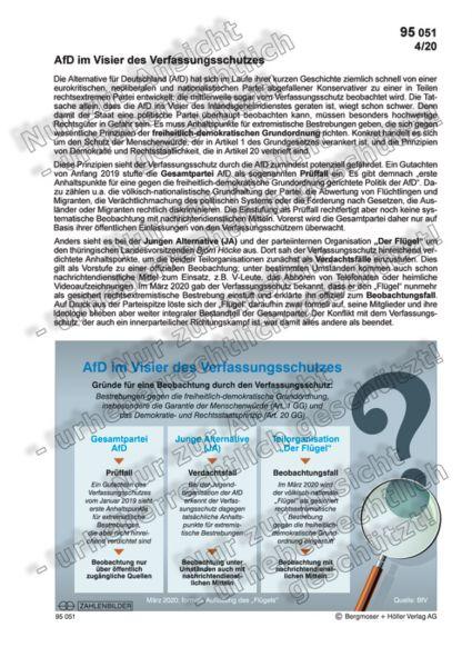 AfD im Visier des Verfassungsschutzes